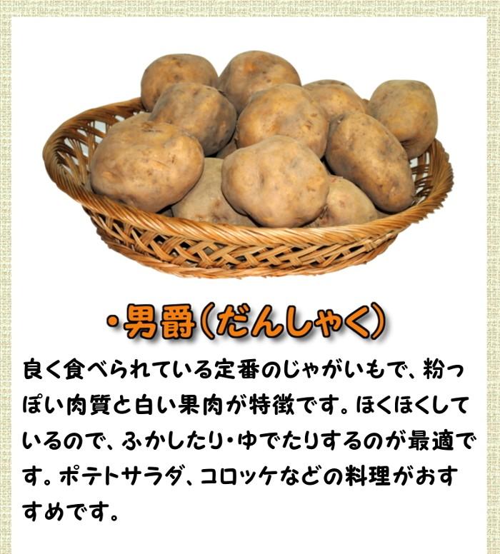 ・各品種の特徴 男爵(だんしゃく)