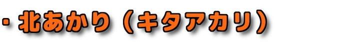 ・北海道産新じゃが 北あかり(キタアカリ)
