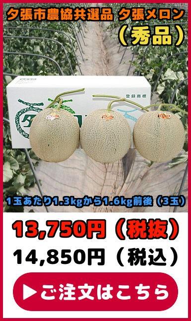 共選品夕張メロン【秀品】(3玉)