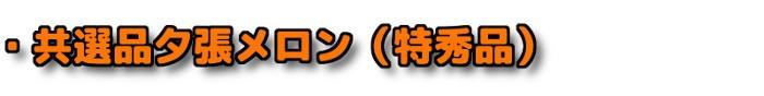 ・共選品夕張メロン(特秀品)