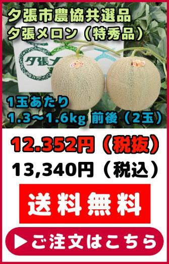 共選品夕張メロン【特秀品】(2玉)