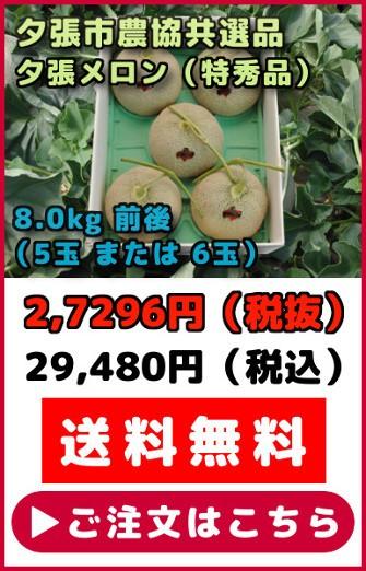 共選品夕張メロン【特秀品】(8.0kg【4〜7玉】)