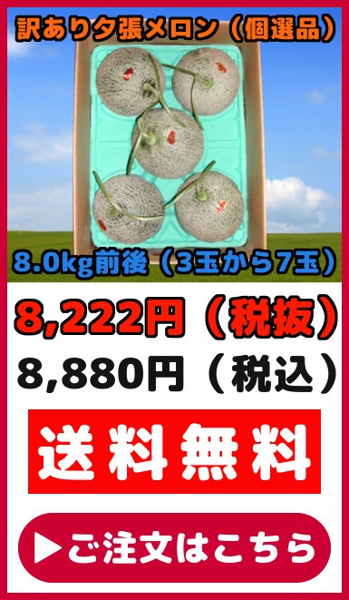 訳あり夕張メロン(8.0kg【3〜7玉】)