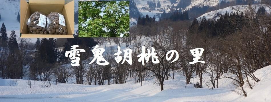 雪鬼胡桃の里