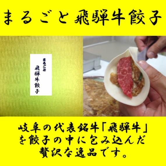 岐阜発ご当地餃子!岐阜夢餃子製作所人気 お取り寄せ 岐阜 冷凍 餃子