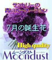7月の誕生花カーネーション・ム