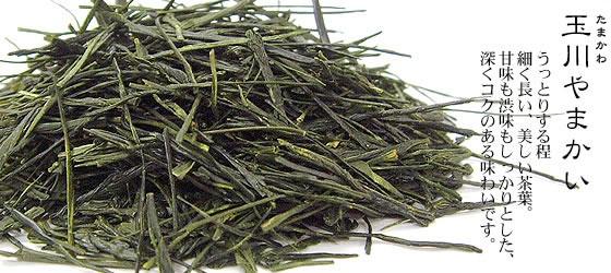 静岡茶 | 玉川やまかい(たまかわやまかい)