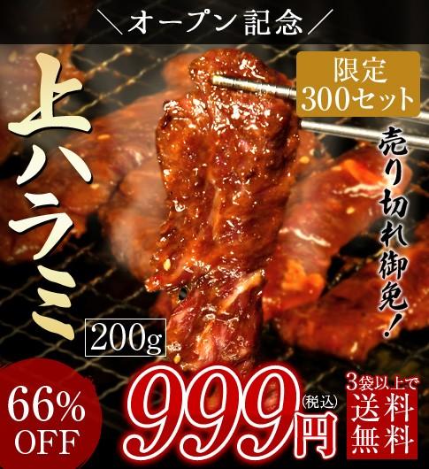 66%OFF 1,991円割引クーポン