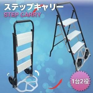 はしご&キャリーカート