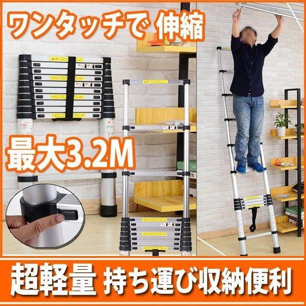 伸縮性はしご