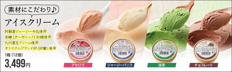 [素材にこだわり♪] アイスクリームシリーズ