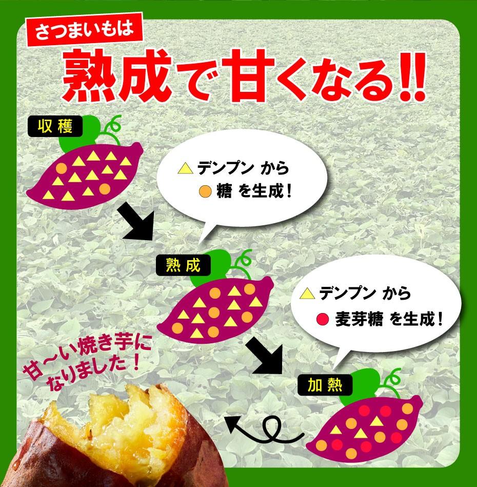 蜜焼き芋013