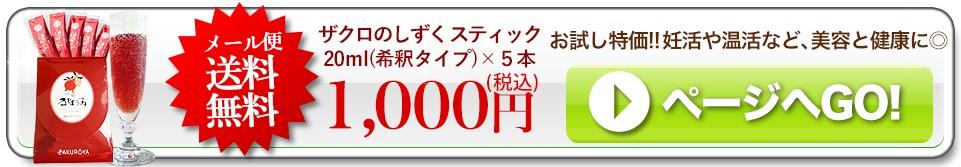 常設用 初回送料無料ポッキリ1000円スティック