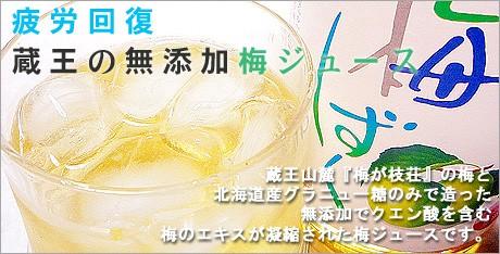 疲労対策に!蔵王山麓 梅が枝荘の梅で造った無添加 濃縮100% 梅ジュース