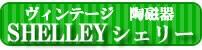 シェリー  SHELLEY
