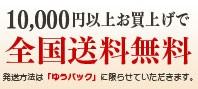 10000円以上全国送料無料