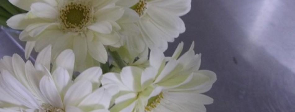 花と雑貨きさらぎ