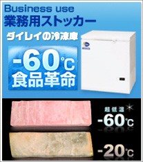 ダイレイの業務用冷凍庫