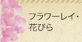 フラワーレイ・花びら
