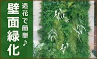 壁面緑化について