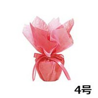 デコポット(4号) ピンク