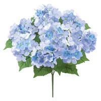 平安アジサイブッシュx8 ブルー