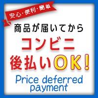 後払い決済 NP後払い 運転免許問題集【ズバリ!問題集】