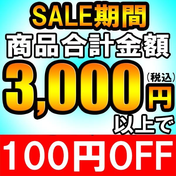 3000円以上のお買上げで★100円引き★クーポン